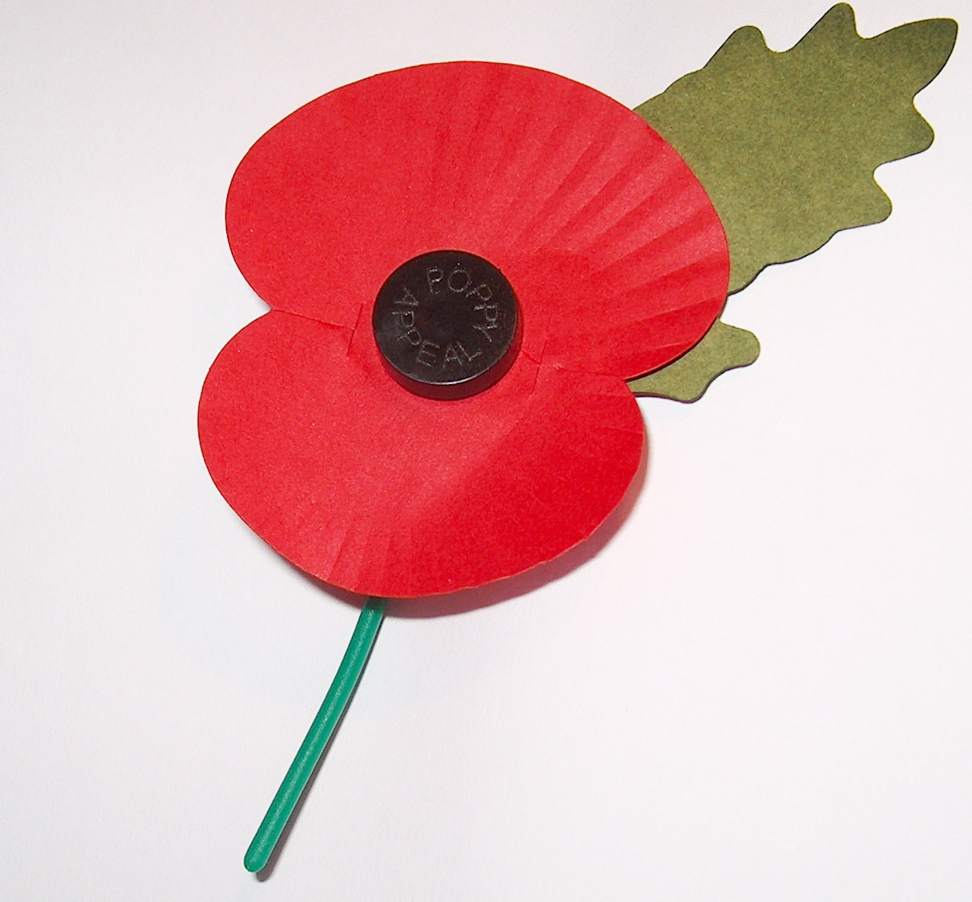 Who Is The Red Poppy Designed To Remember The Answer Might Surprise